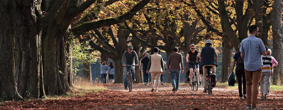 περπάτημα_στο_πάρκο
